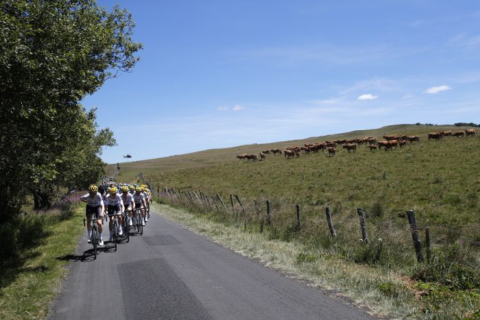 Team Sky sets the pace for the pack during the fifteenth stage of the Tour de France cycling race over 189.5 kilometers (117.8 miles) with start in Laissac-Severac l'Eglise and finish in Le Puy-en-Velay, France, Sunday, July 16, 2017. (AP Photo/Christophe Ena)